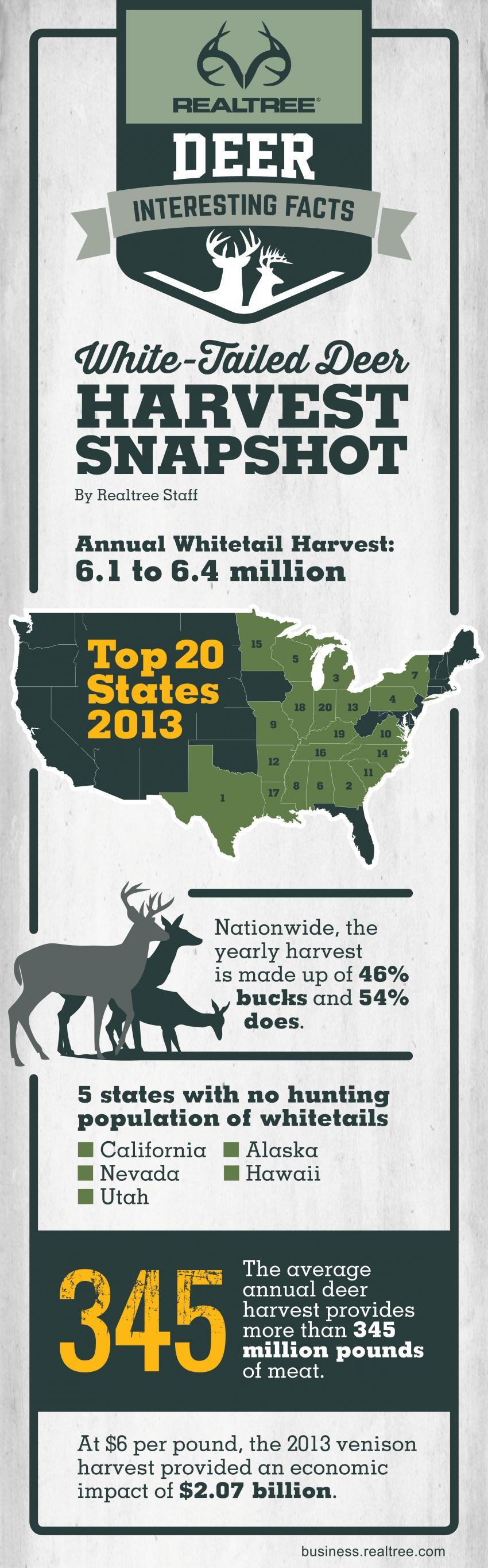 Whitetail Deer Harvest Infographic 2016 | Realtree B2B